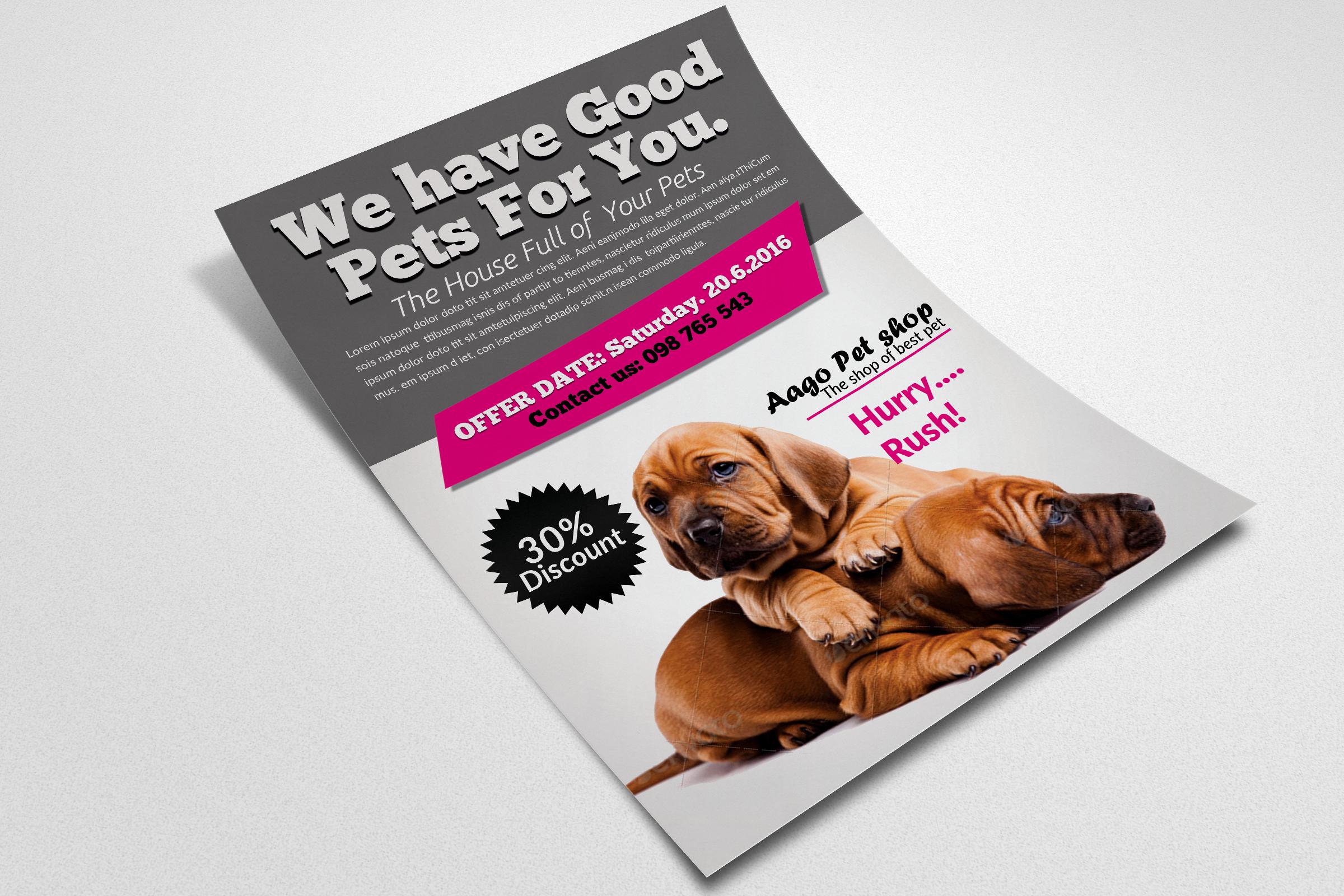 Pet Shop Flyer Templates example image 2