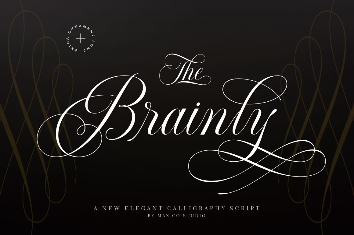 Brainly Script- With Ornament example image 1