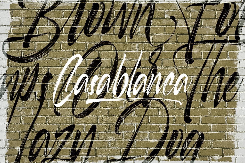 Selfakia Brush Font example image 2