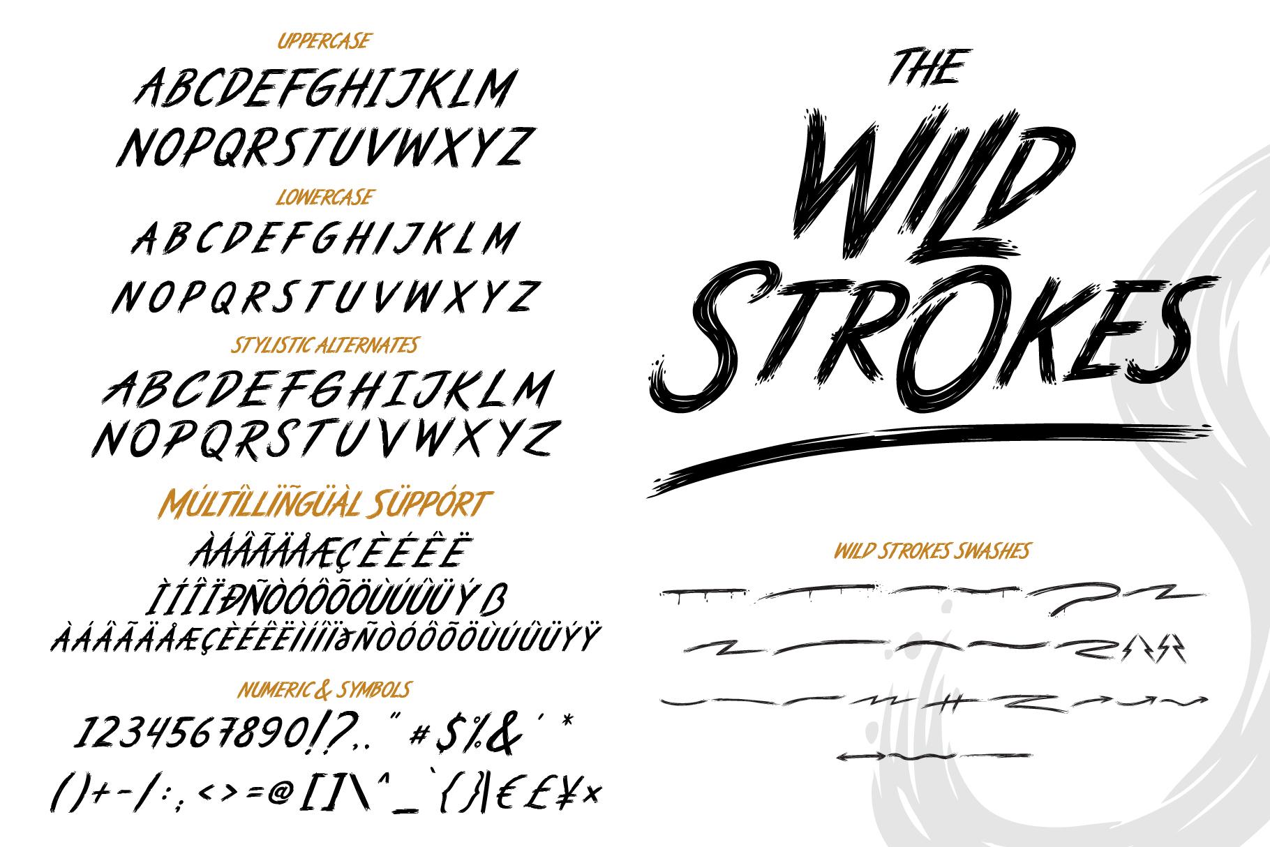 The Wild Strokes example image 8