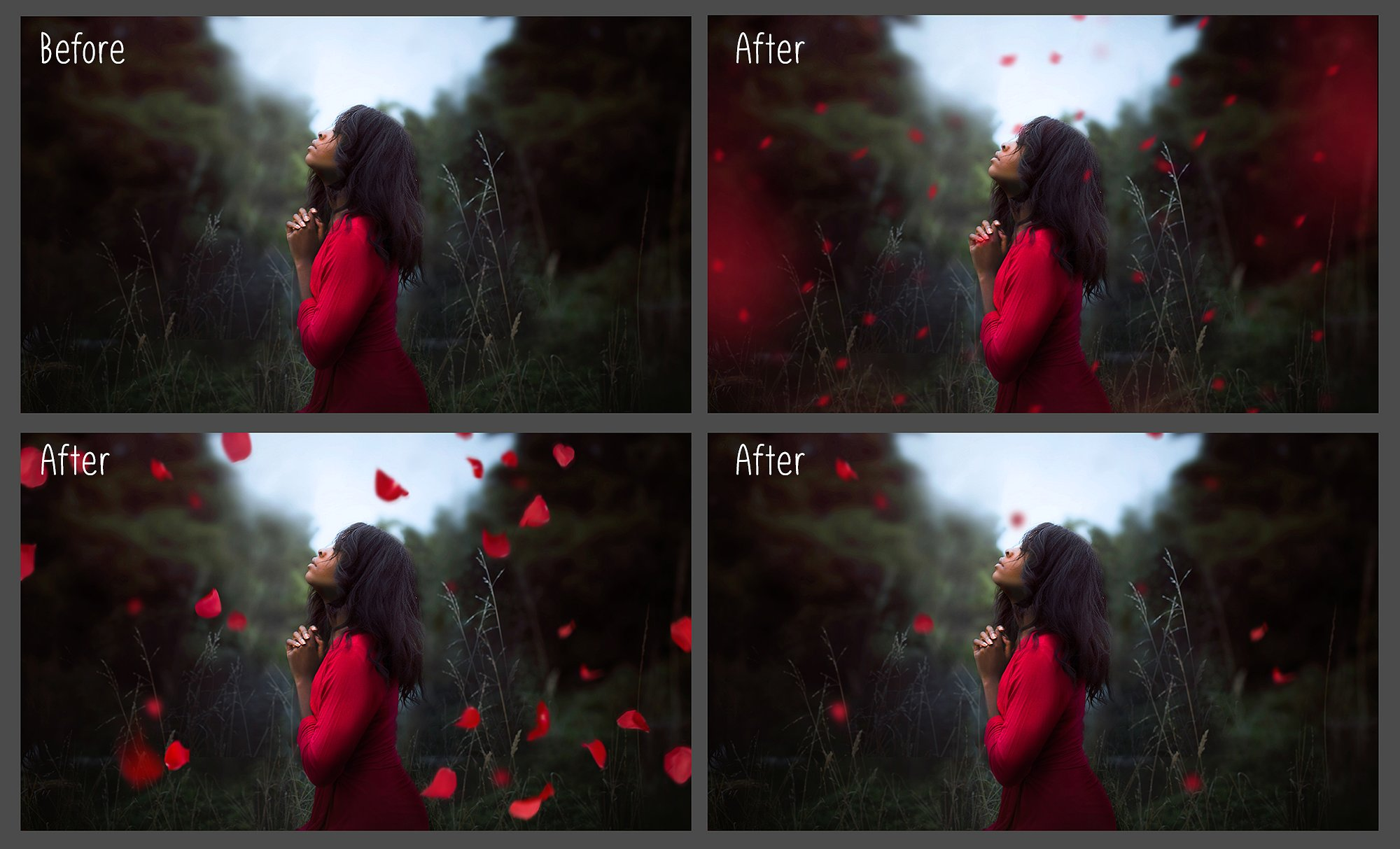Falling Rose Petals Photo Overlays example image 2