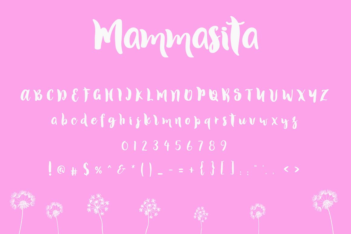 Mammasita Script Font example image 4