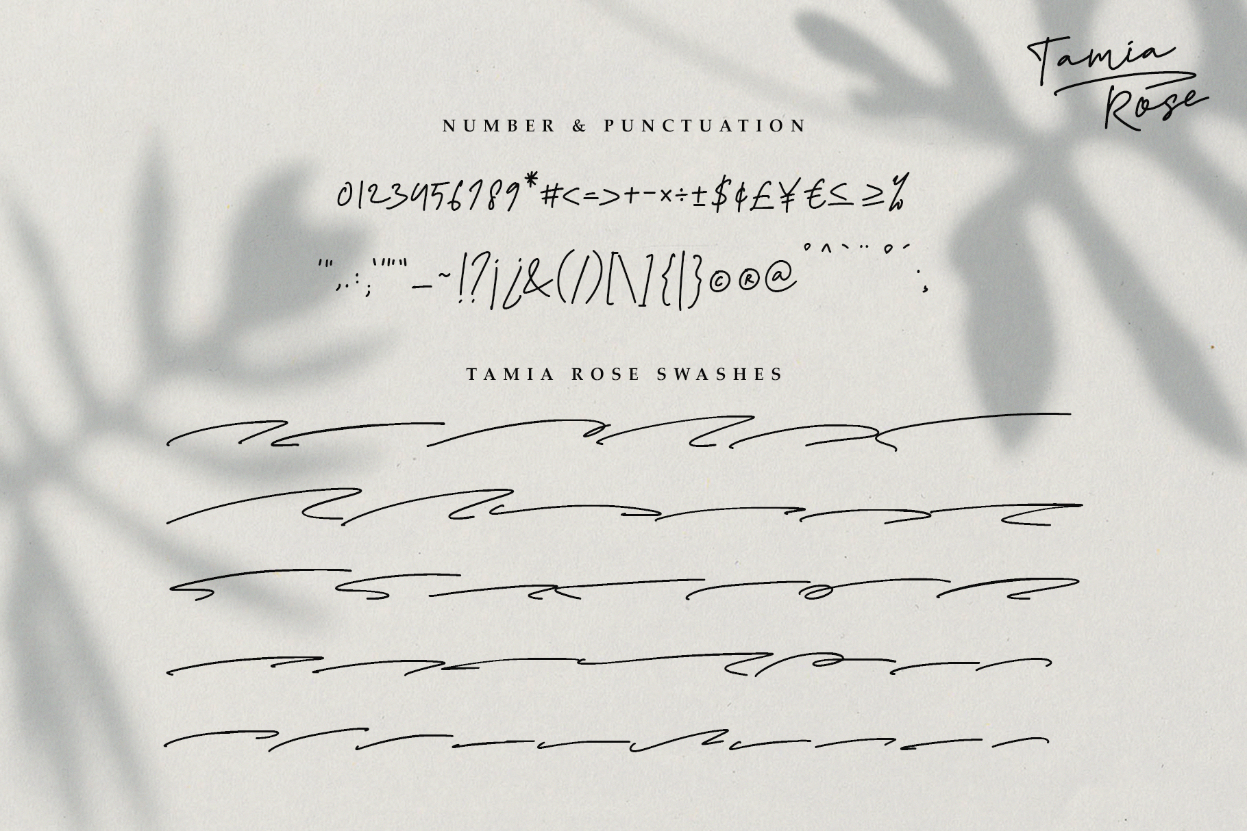 Tamia Rose Signature - Extra Swashes example image 12