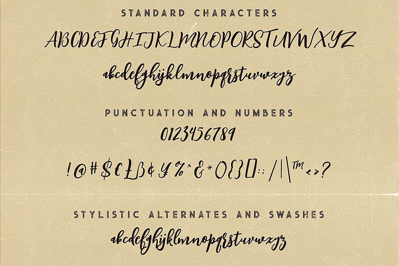 Singapore Script Font example image 6