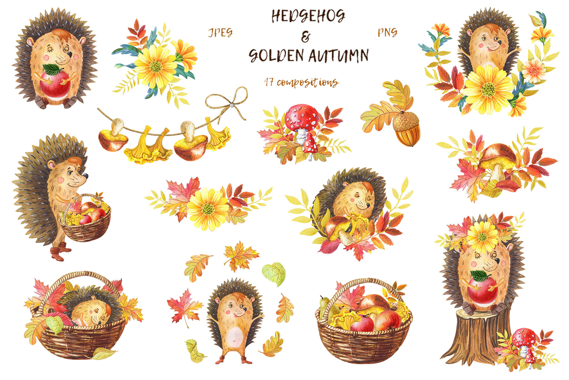 HEDGEHOG & GOLDEN AUTUMN example image 3