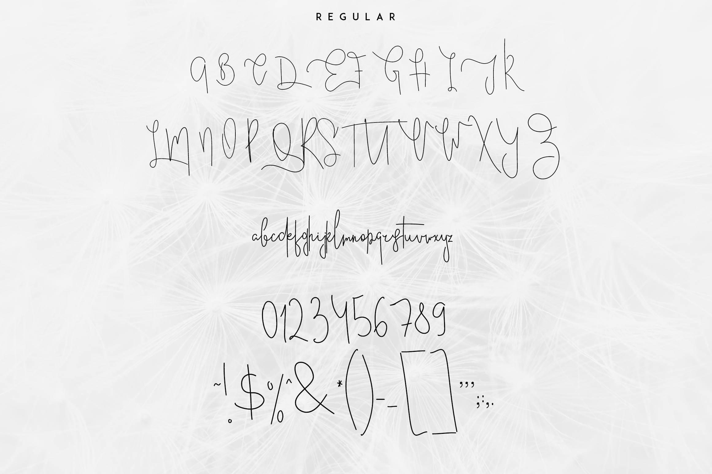 Good Wish Signature font example image 4
