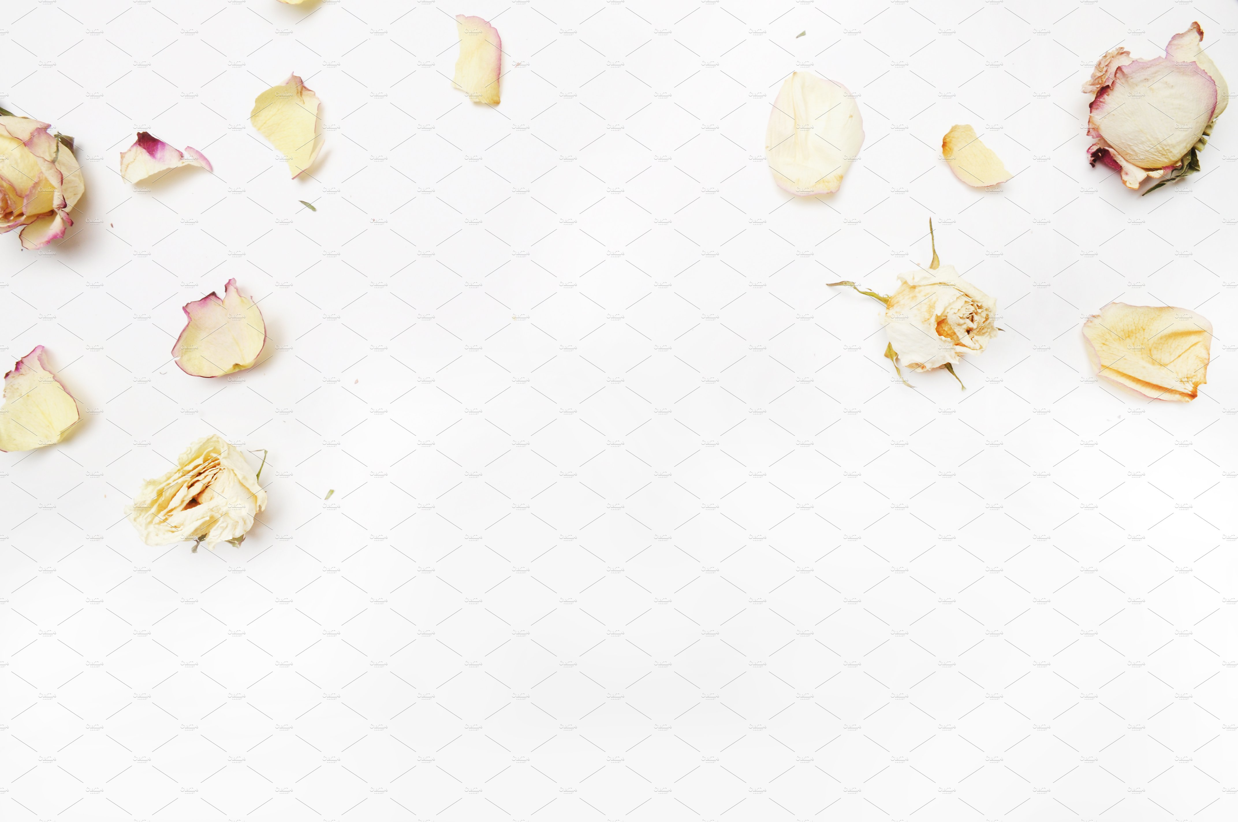 Floral Mockup Pack example image 7