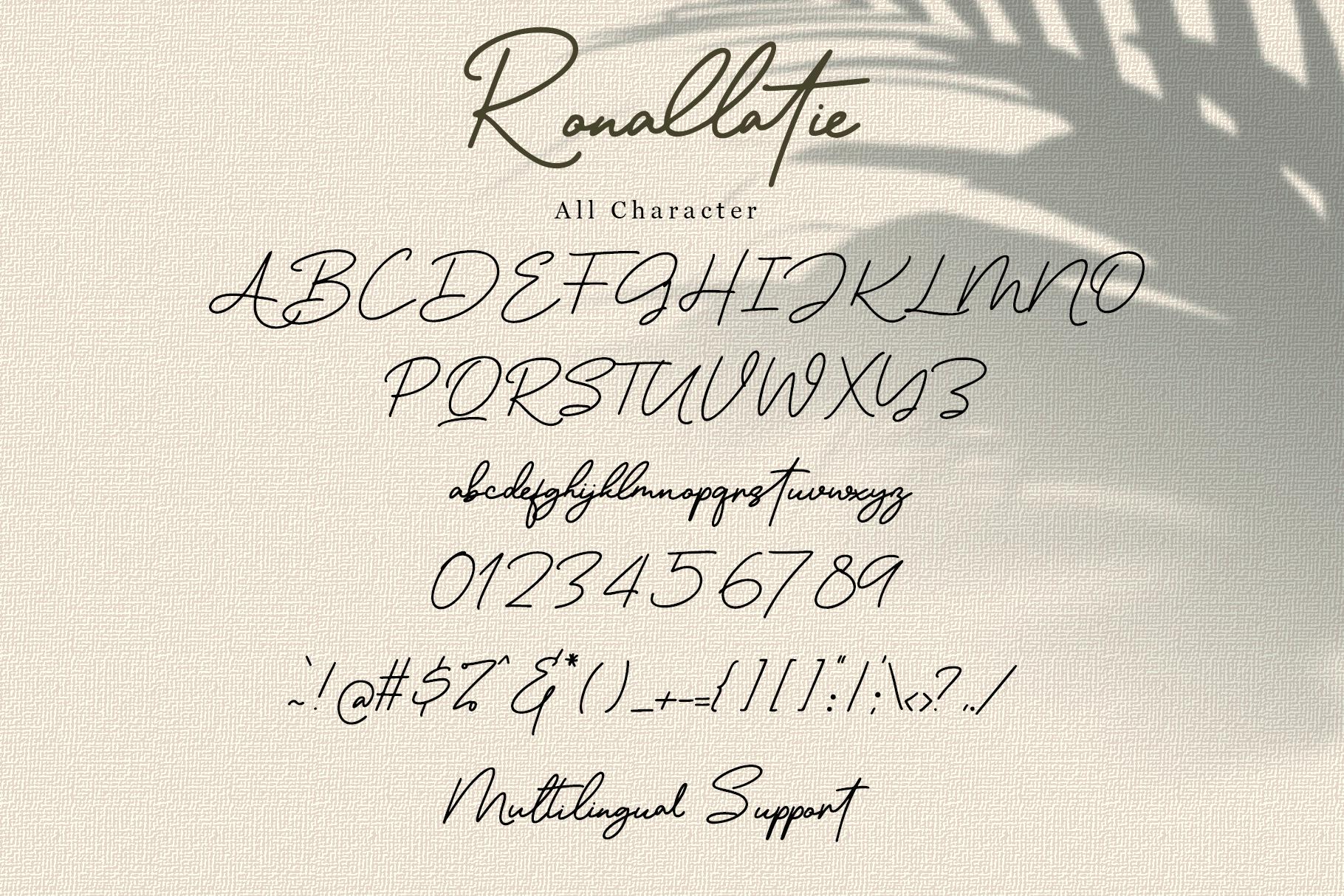 Ronallatie - Elegant Signature Font example image 8