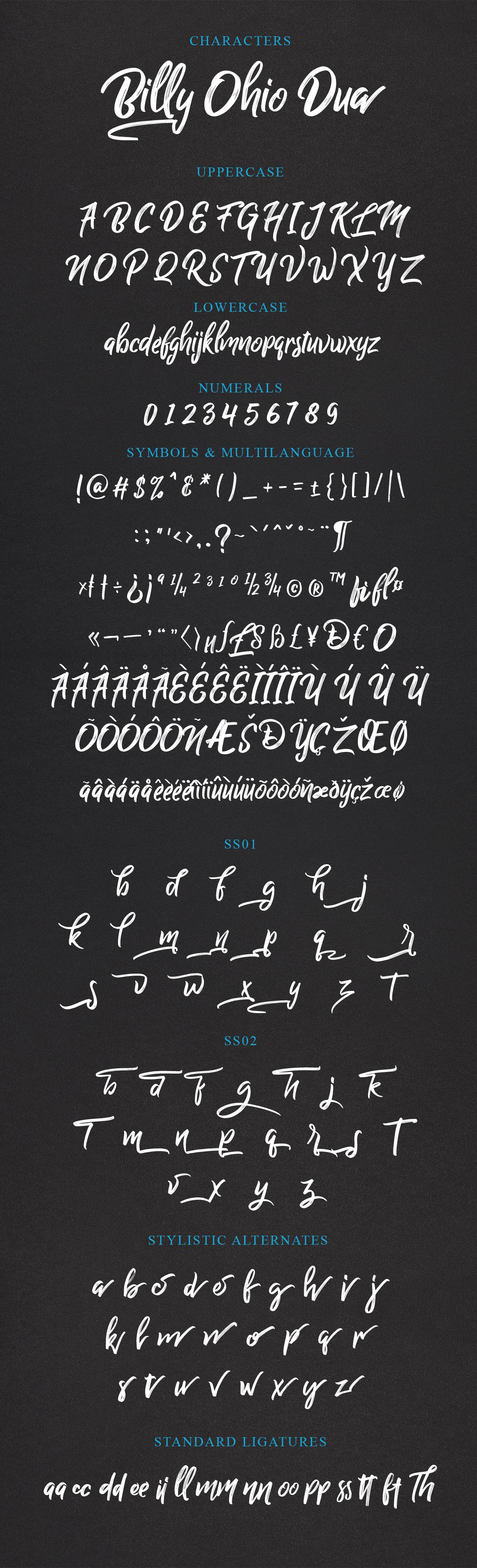 Billy Ohio Typeface example image 11
