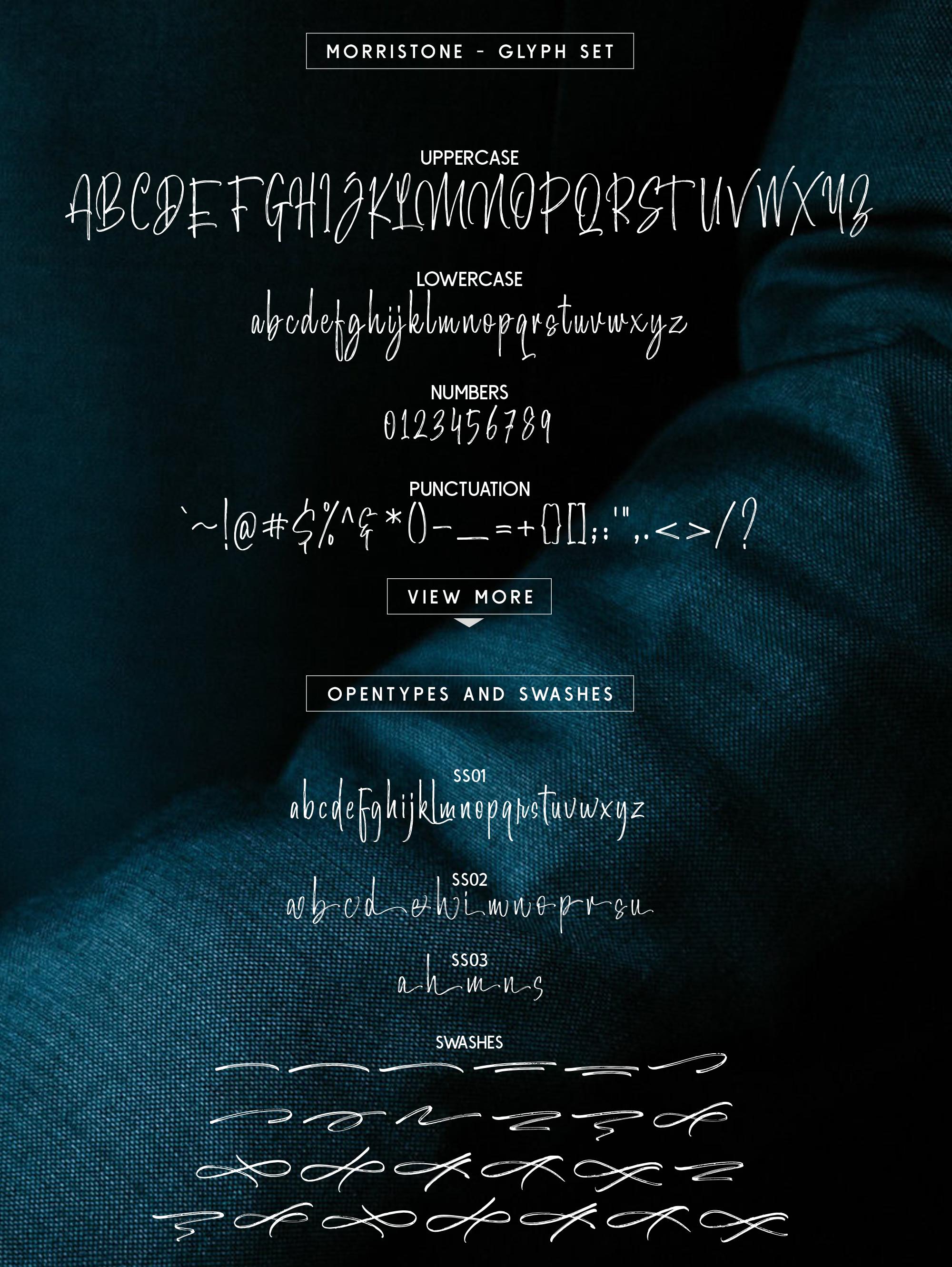 Morristone Script & Sans example image 11