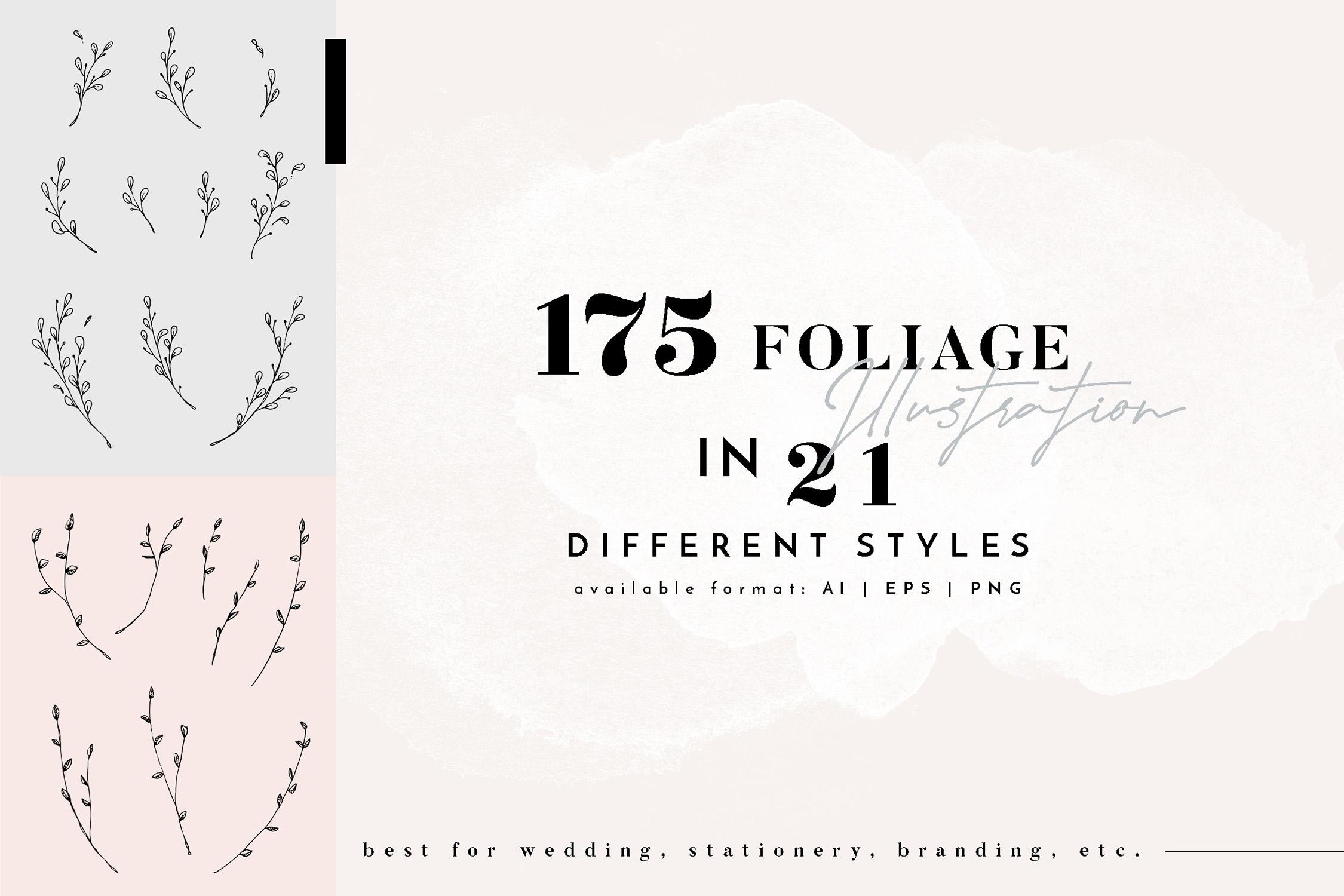 Floral Outline Illustration & Logo Pack example image 3