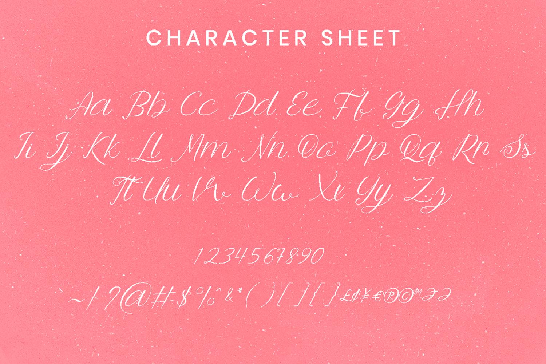 Anttalla script example image 6