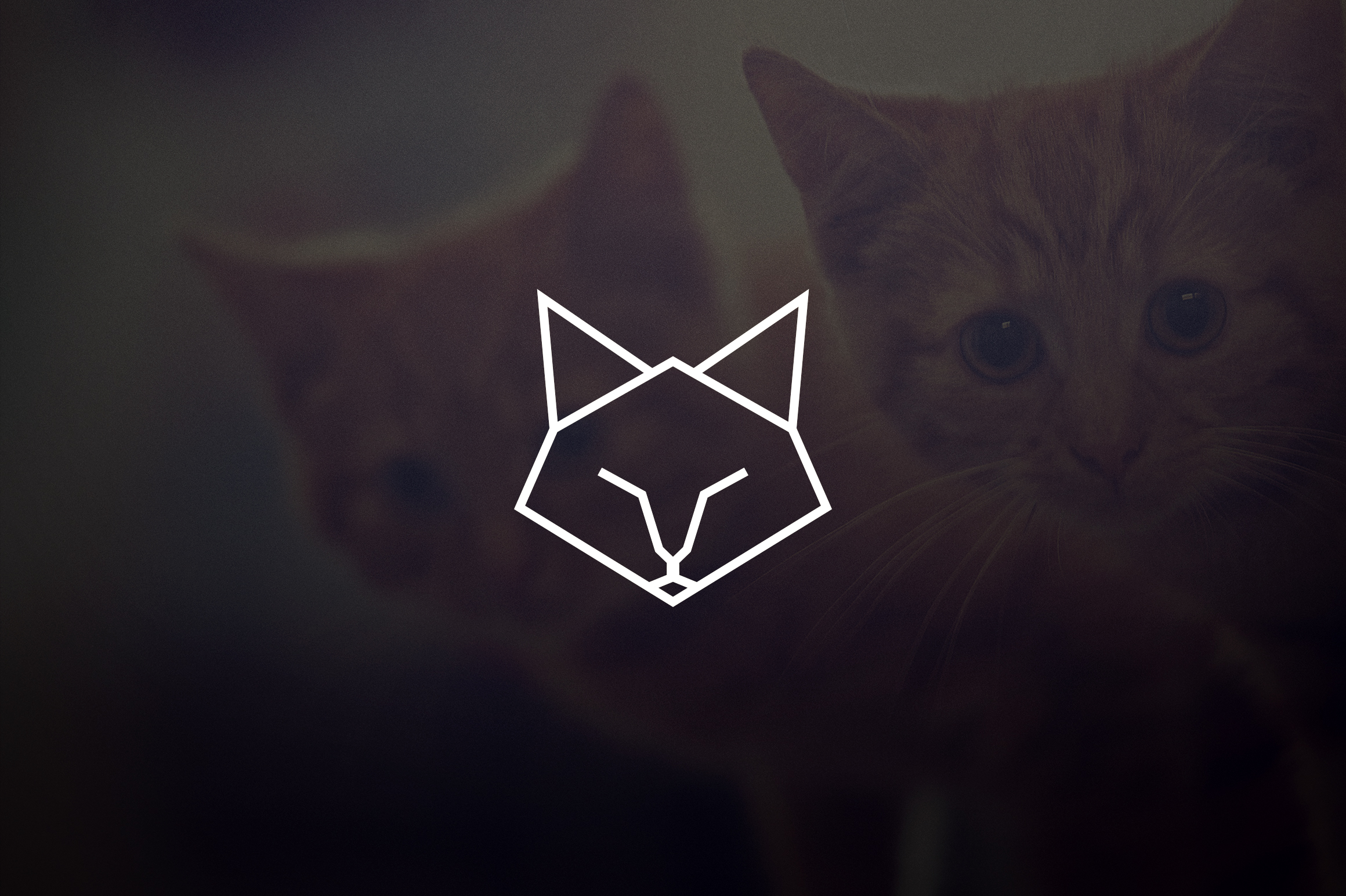 17 Geometric Animal Icons and Logos example image 3