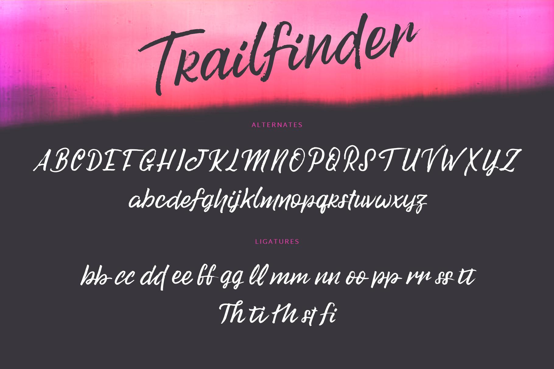 Trailfinder | A Brush Script Font example image 9