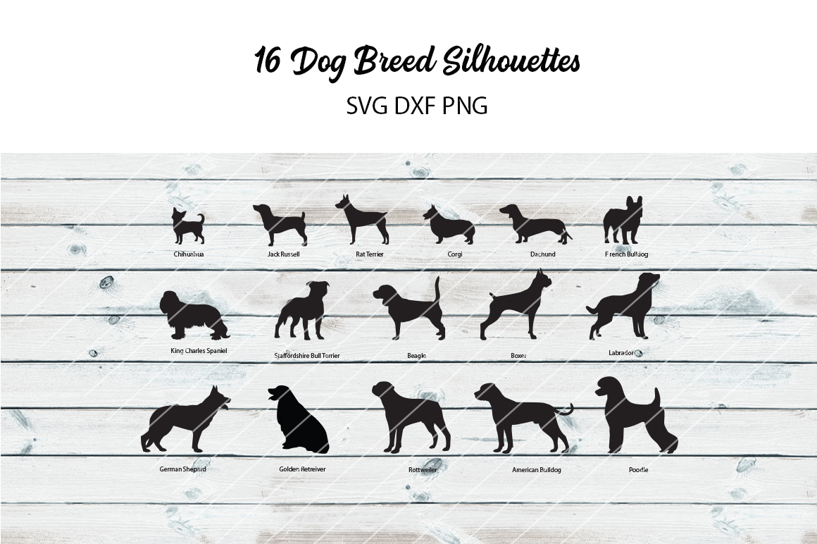 16 Dog Breed Silhouettes - svg dxf png example image 1