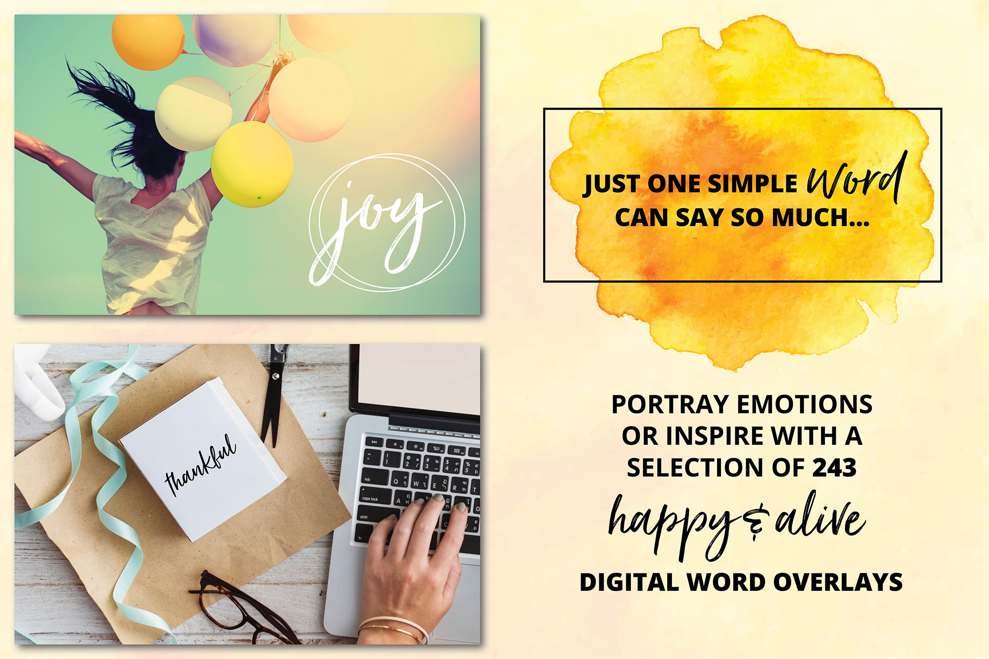 Social Media Overlays - 246 Happy & Alive Emotions Words example image 4