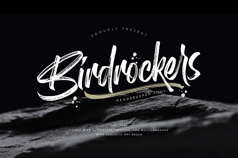 Birdrockers || Realistic Brush Font example image 1