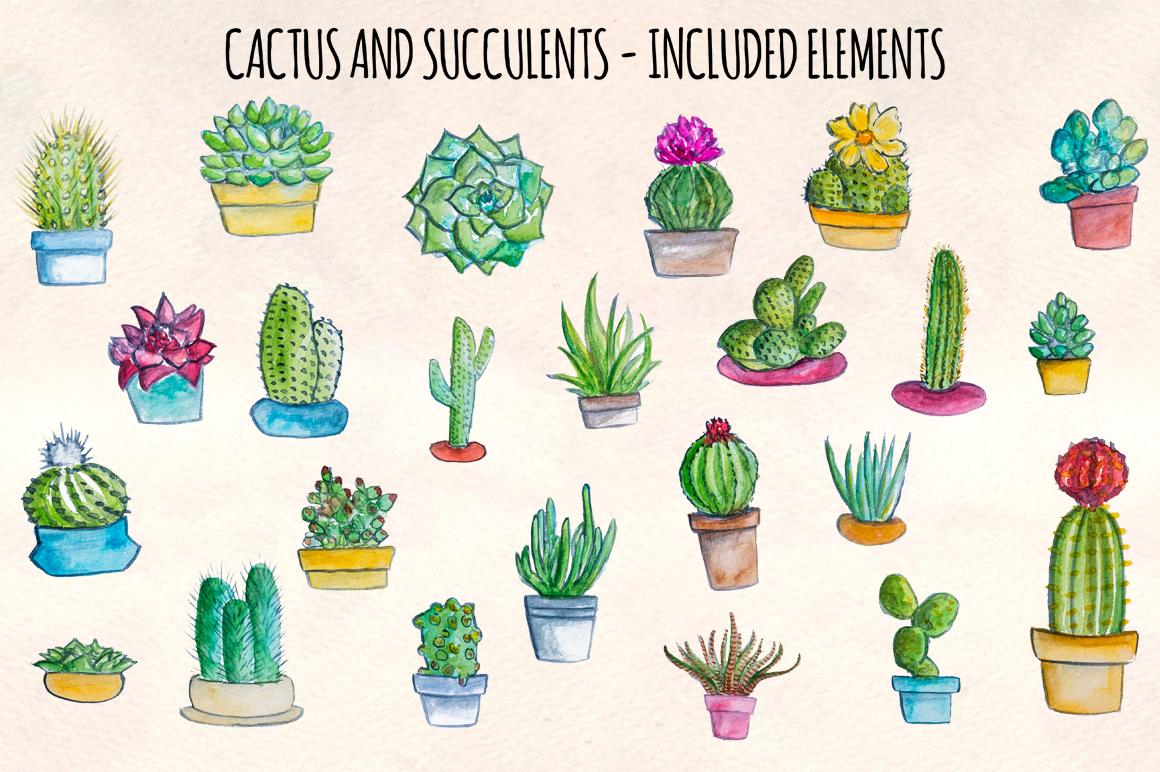 24 Cactus and Succulent Indoor Garden Watercolors example image 2