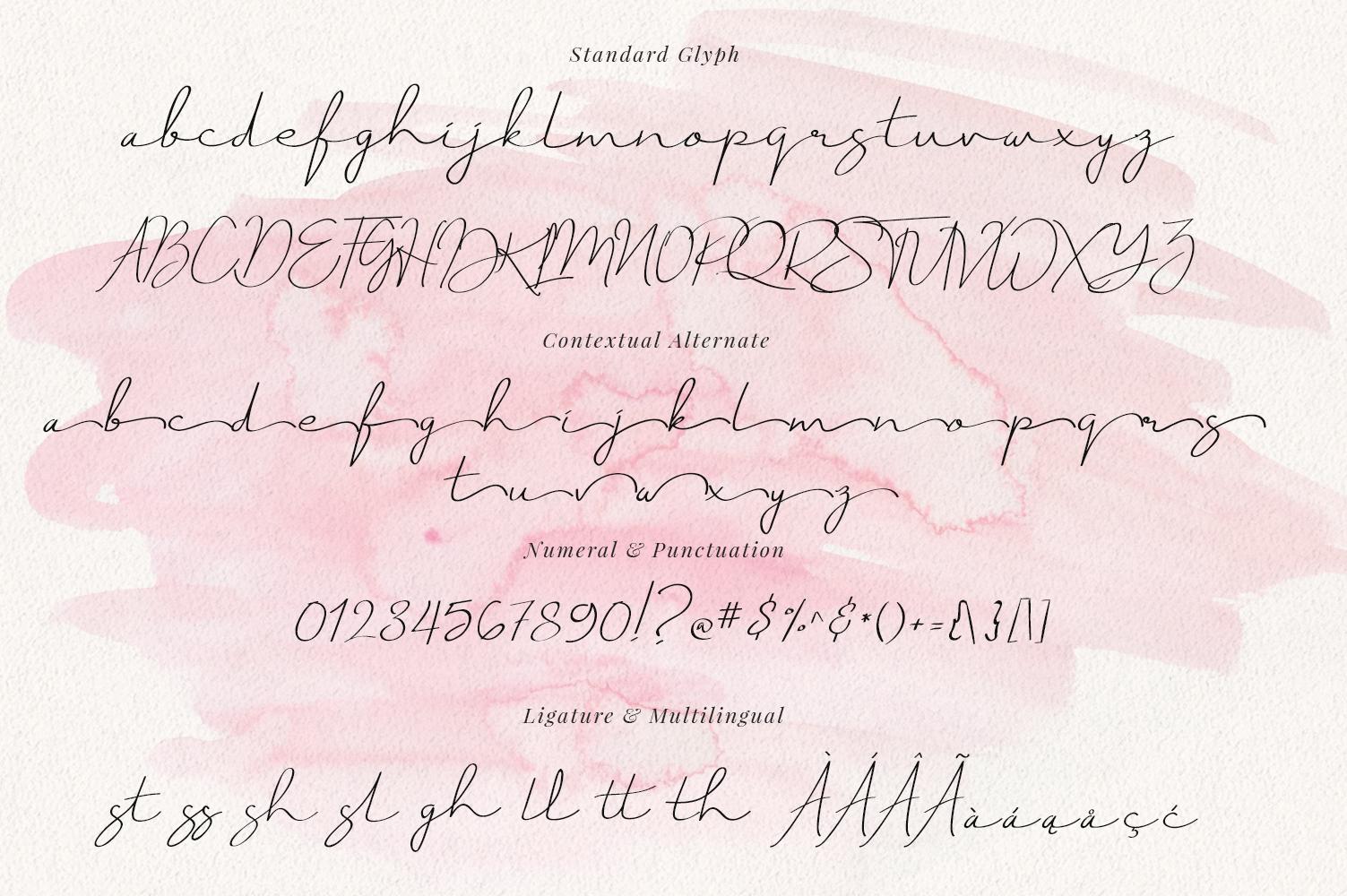 Just Signature Script example image 8