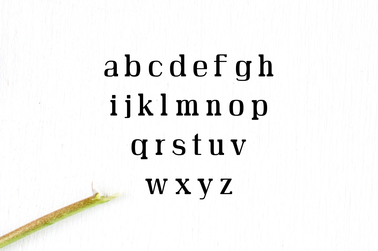 Adie High Class Serif Typeface example image 3