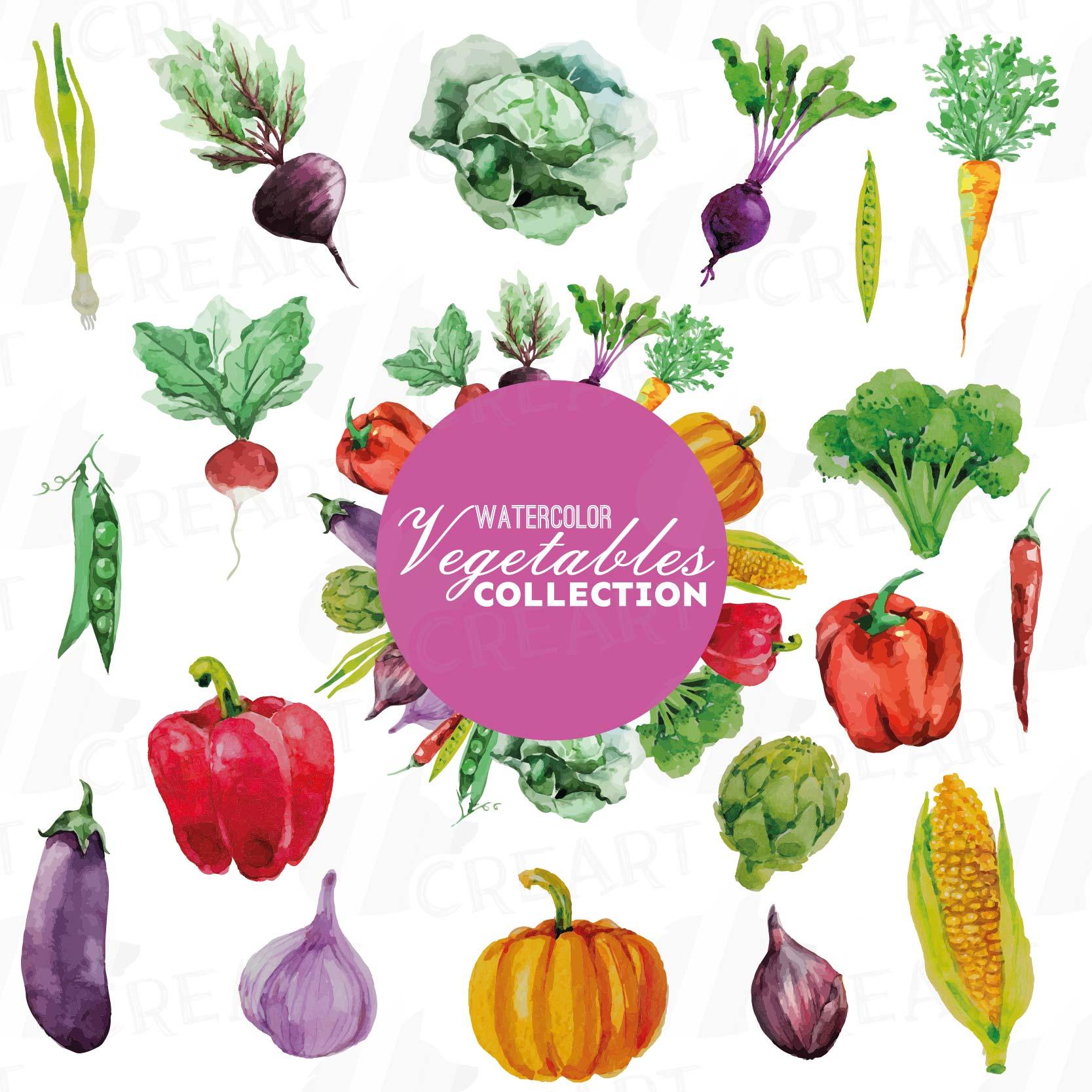 Watercolor Vegetables Clip Art Pack Green And Colorful Vegetables Healthy Food Eps Png Jpg Svg Vector Files Included Instant Download 101362 Illustrations Design Bundles