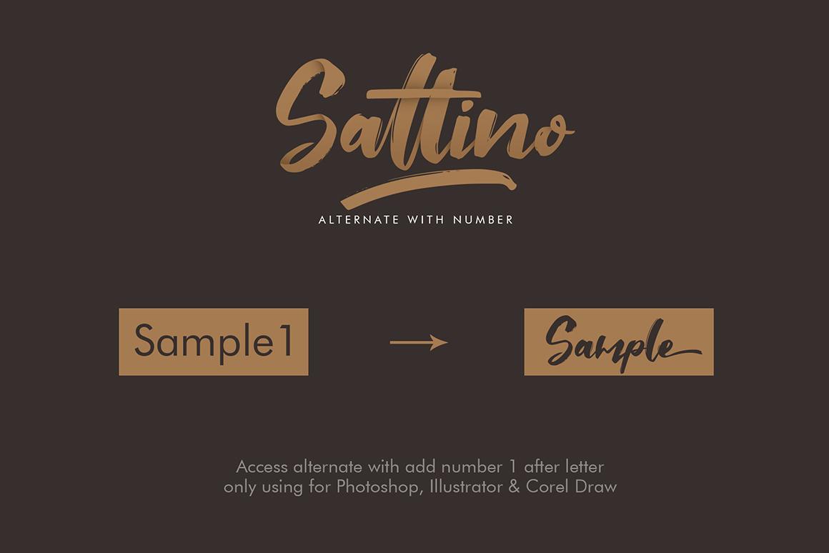 Saltino Script example image 6