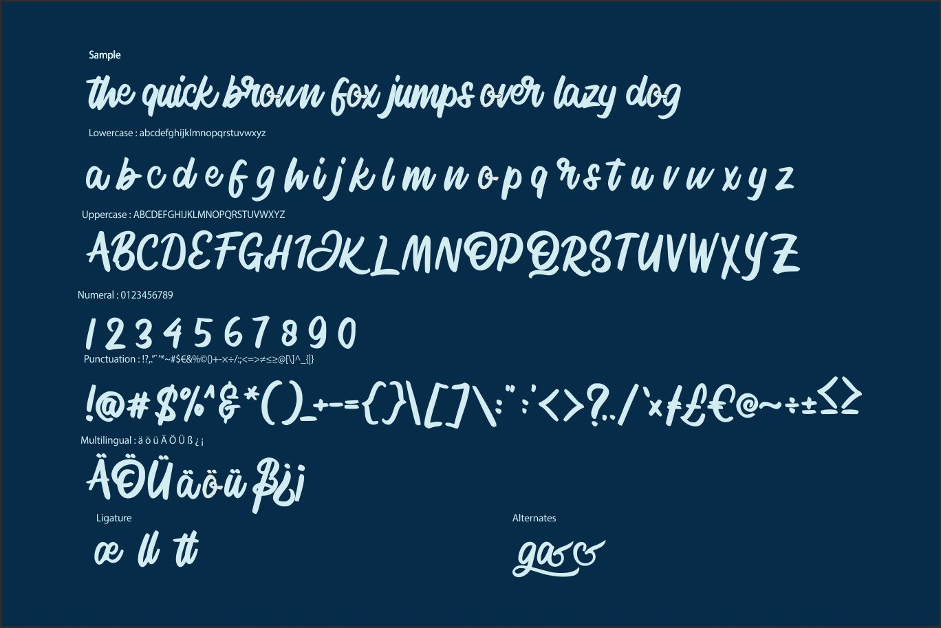 Signlia | Modern Script Font example image 6