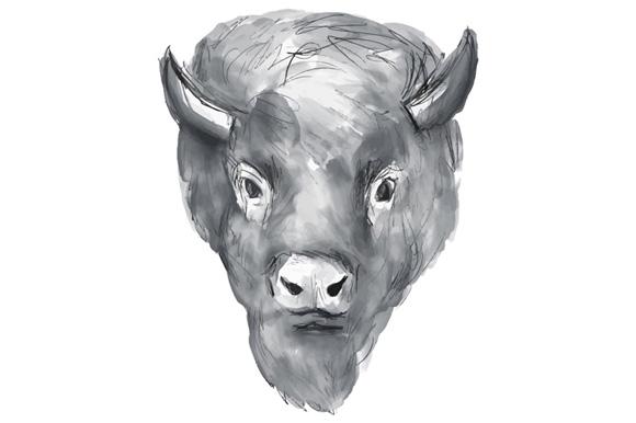 American Bison Head Watercolor example image 1