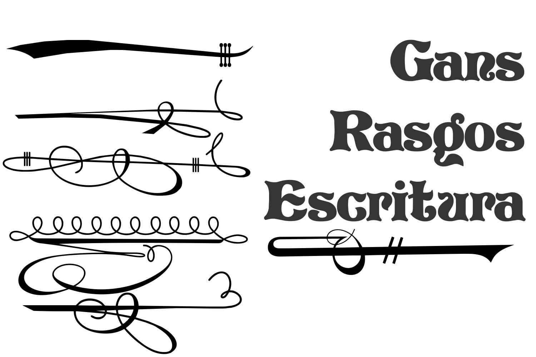 Gans Rasgos Escritura example image 1