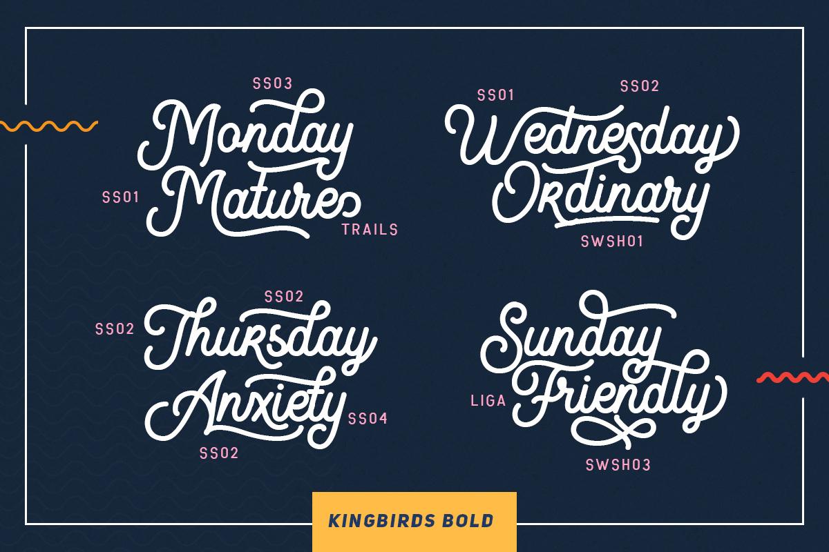 Kingbirds - 6 Styles Monoline example image 2