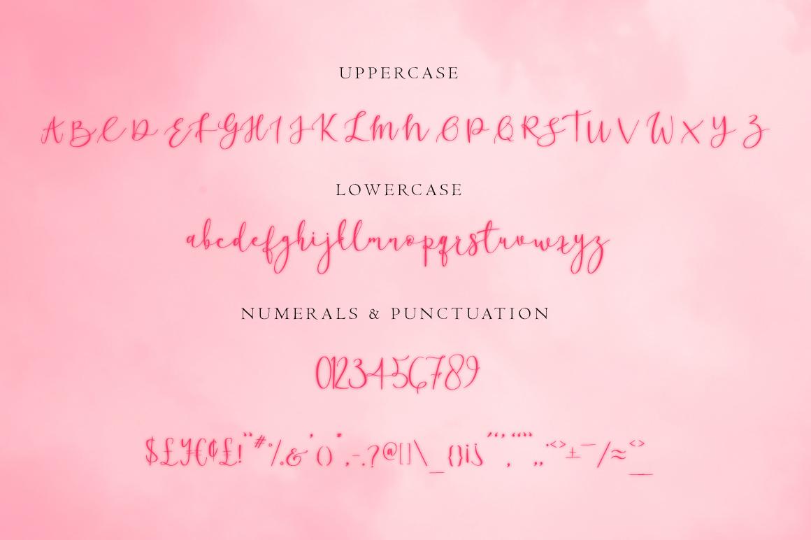 Ronhilli Script Font example image 4