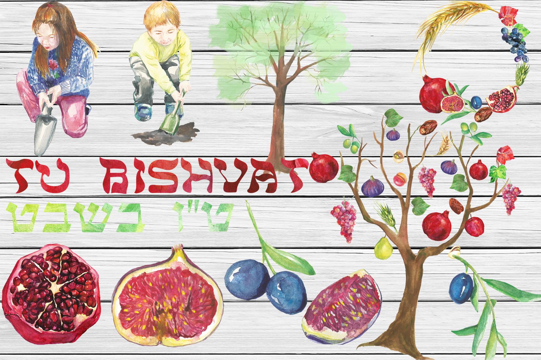 Watercolor Tu Bishvat digital clip art example image 3