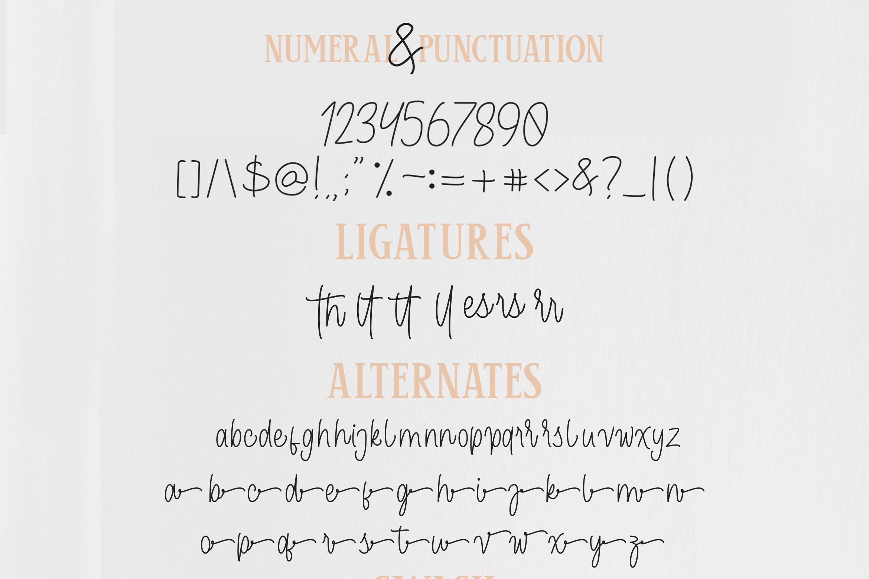 Cendolita Dualis - Script and Serif example image 11