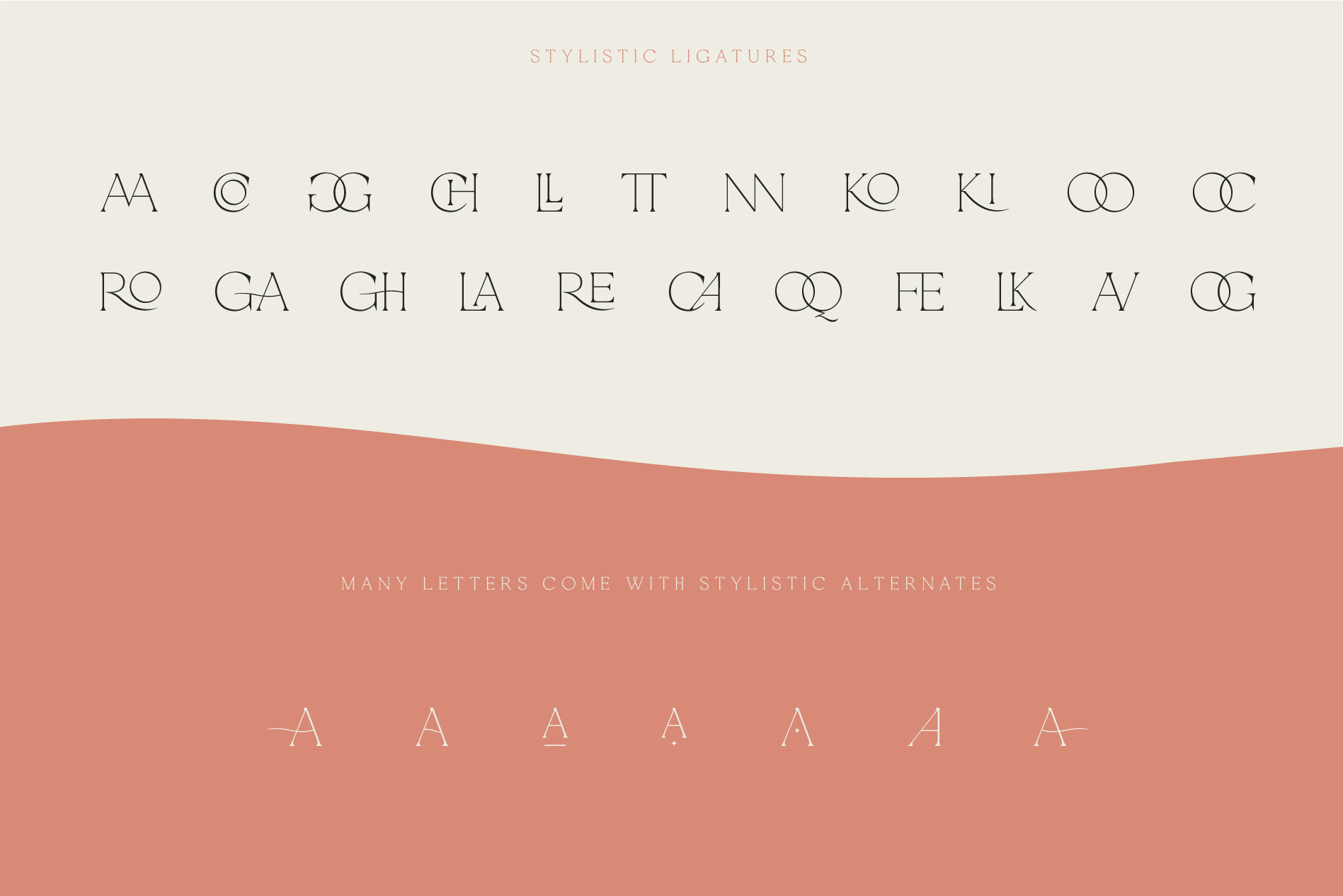 La Rosa Elegant Unique Serif Font example image 4