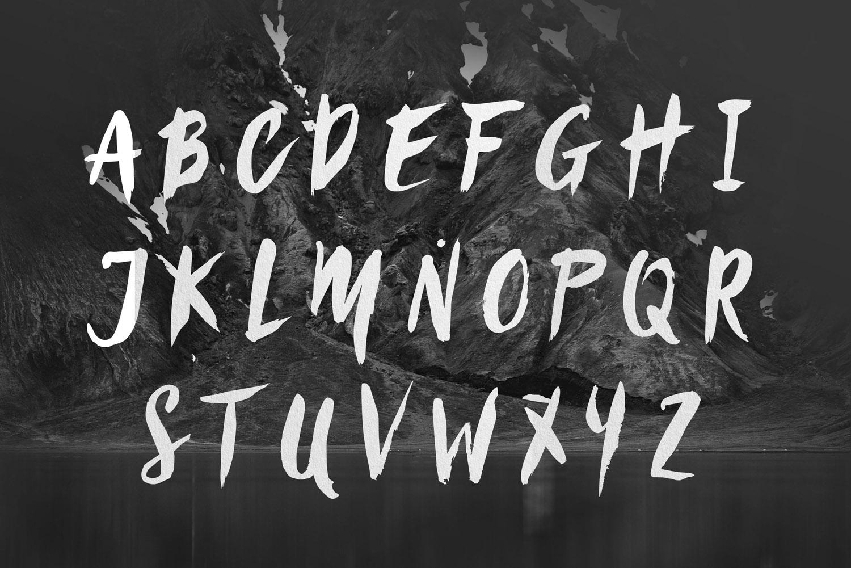 Sanös Extended Script Font example image 4