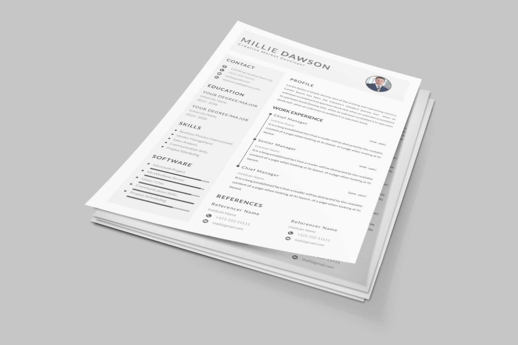 Professional Cv Resume Bonus business card Word/PSD,AI example image 6