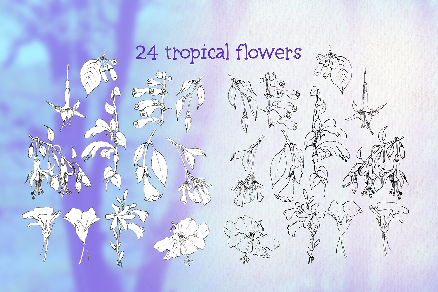 hummingbirds & tropical flowers watercolor clipart example image 7