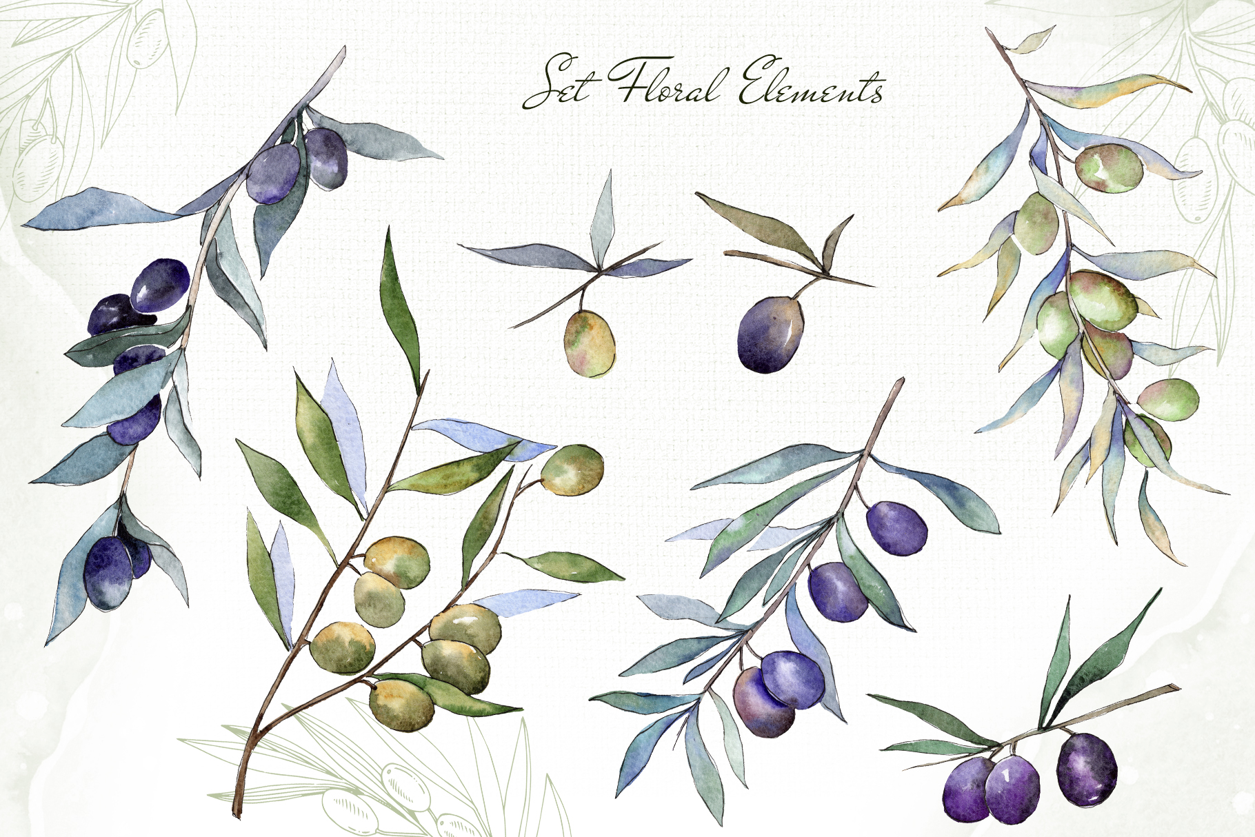 Olive branches collection Watercolor png example image 4