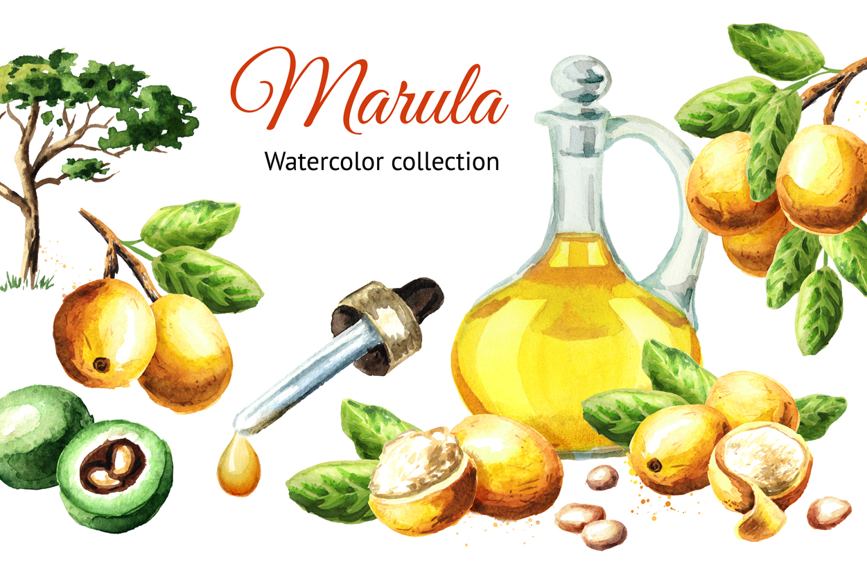 Marula example image 1