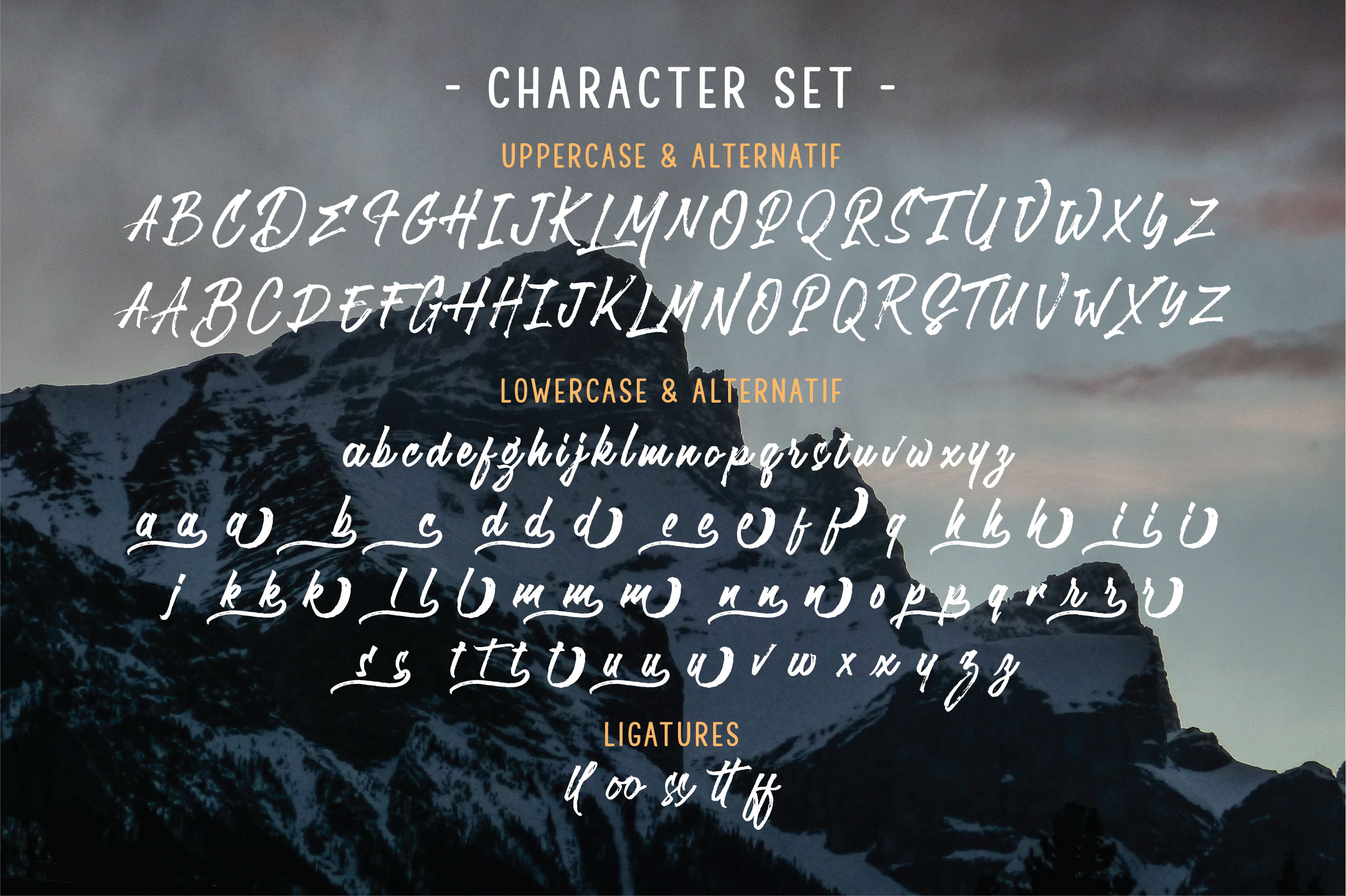 Roughish Brush Font example image 3