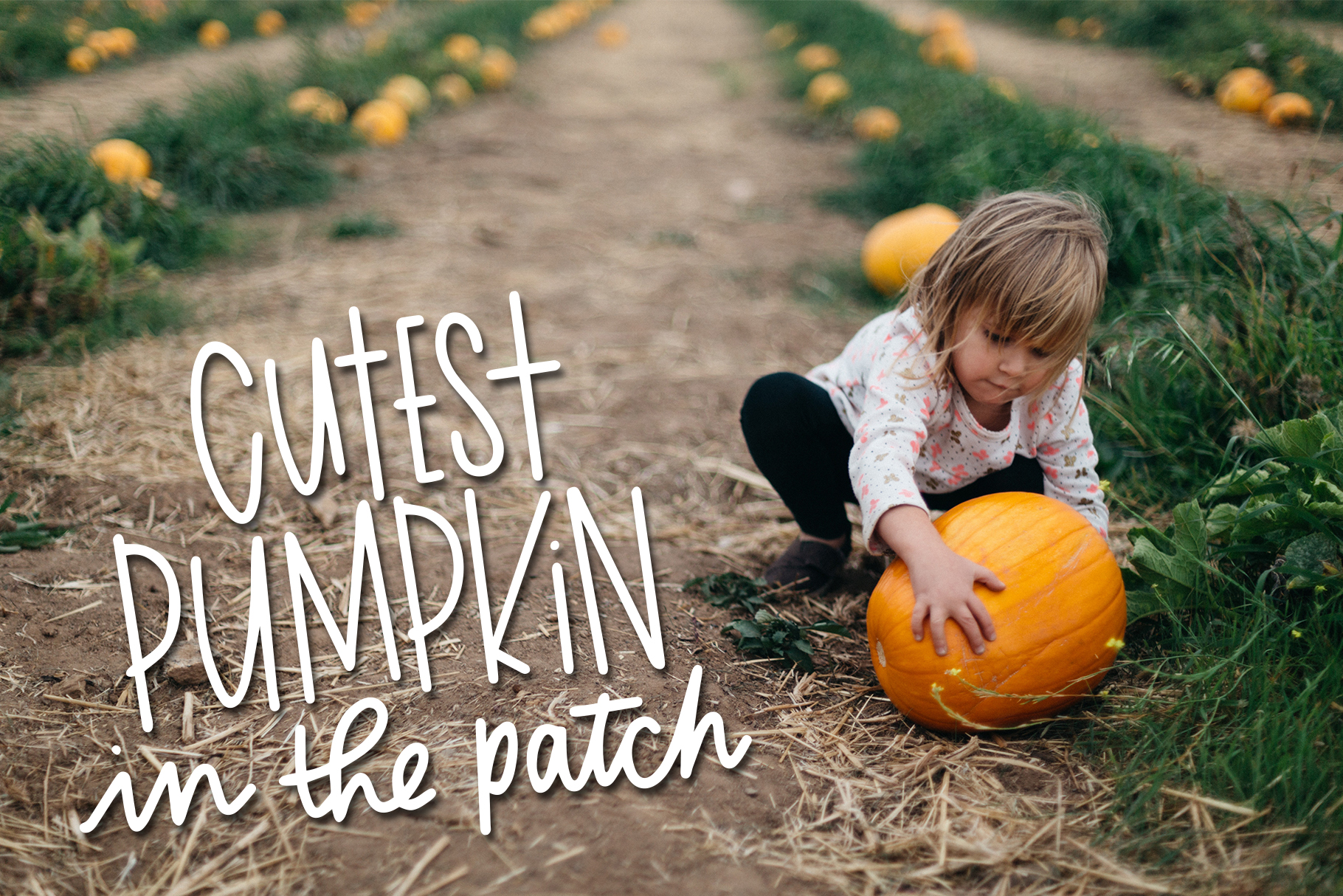 Fall Phrases Symbols Font example image 10