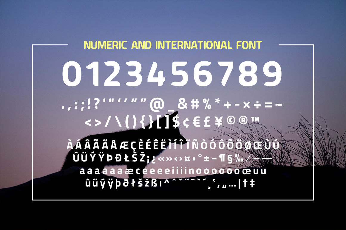 American Fox Font example image 5