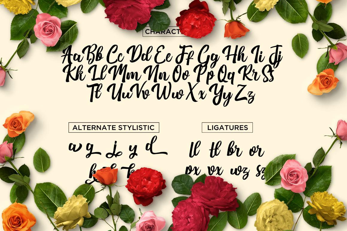 Nichole Script example image 5