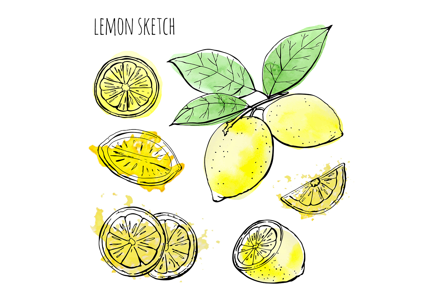 Sketch lemons. Watercolor. Vector. example image 3
