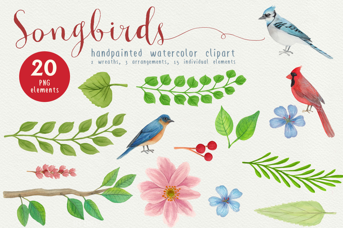 Song Birds Watercolor Clipart example image 3