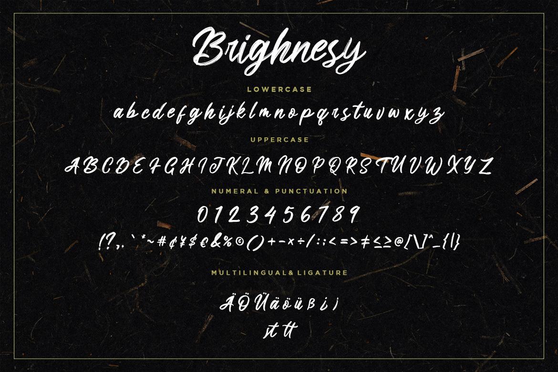Brighnesy Hand Brush example image 7