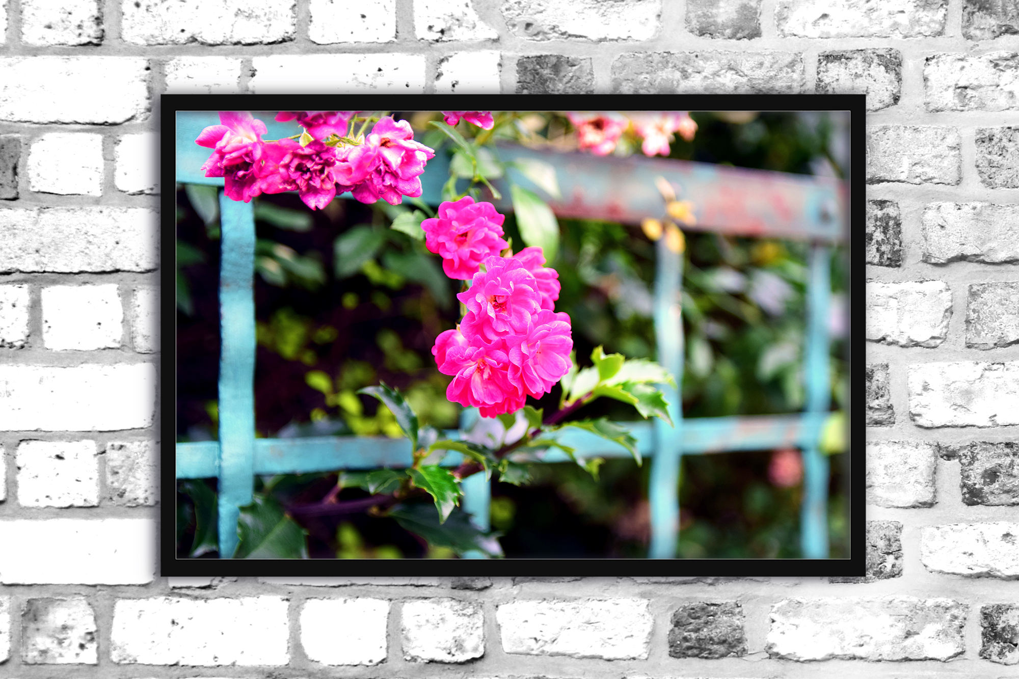 Nature photo, floral photo, flower photo, summer example image 6