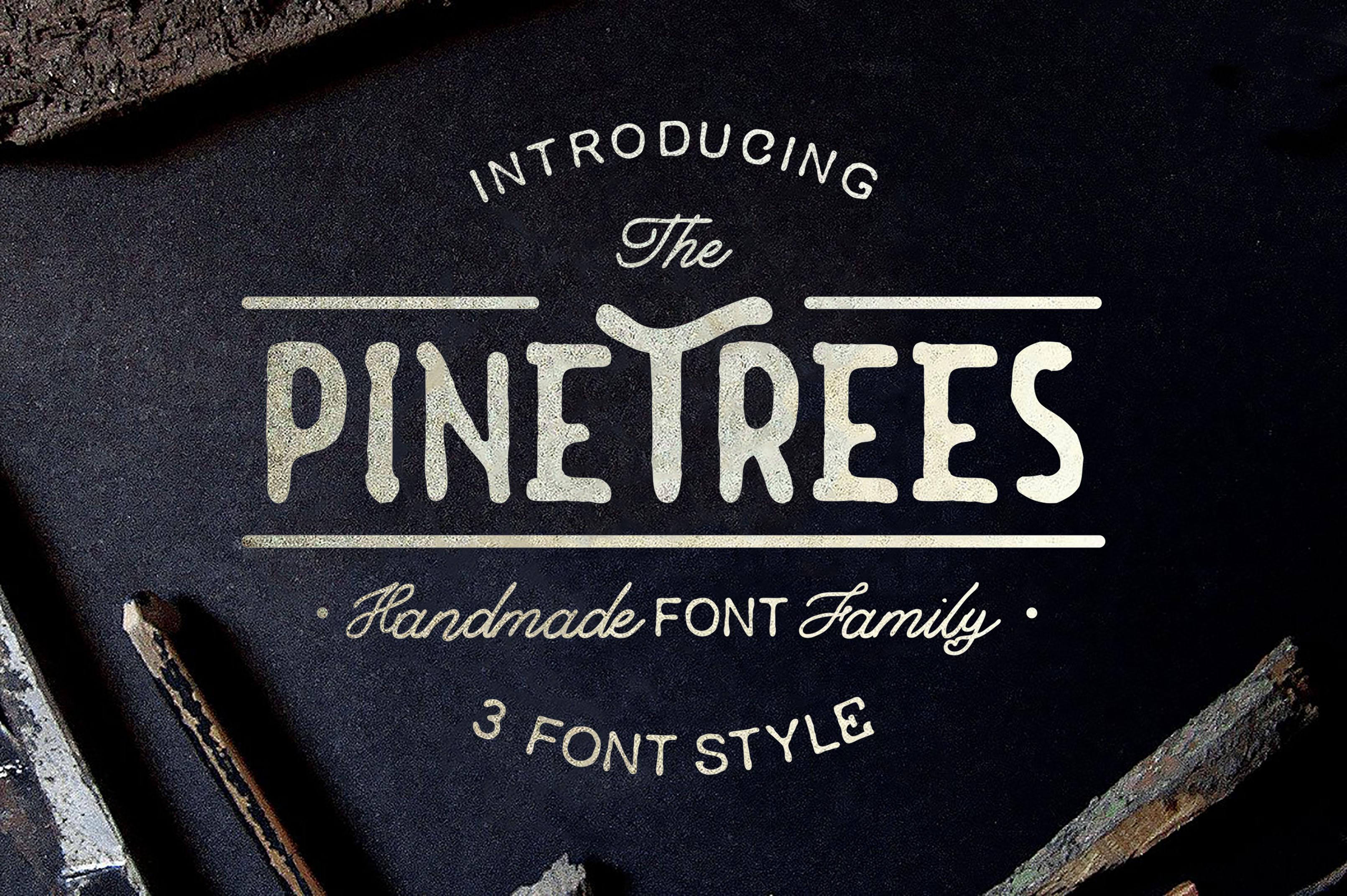 Summer  3 Font Bundles example image 1