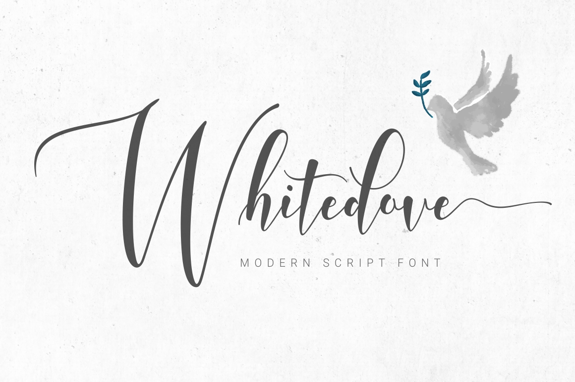 Whitedove Modern Script example image 1