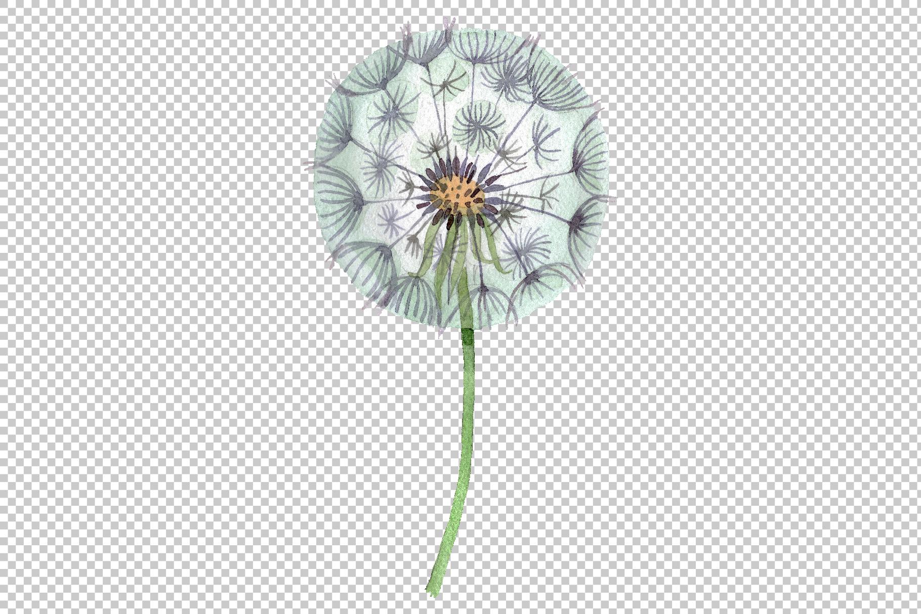Dandelion summer greeting watercolor png example image 2